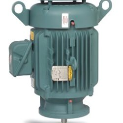 BALDOR ABB VERITCAL P-BASE MOTORS